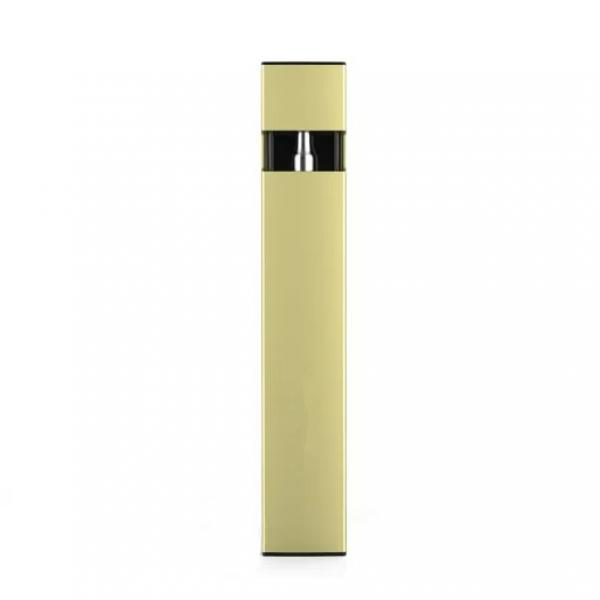 Guan Leming Clear Transparent Fountain Pen & Gold Fine Pt New See The Ink Flow